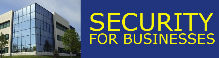 Security for businesses